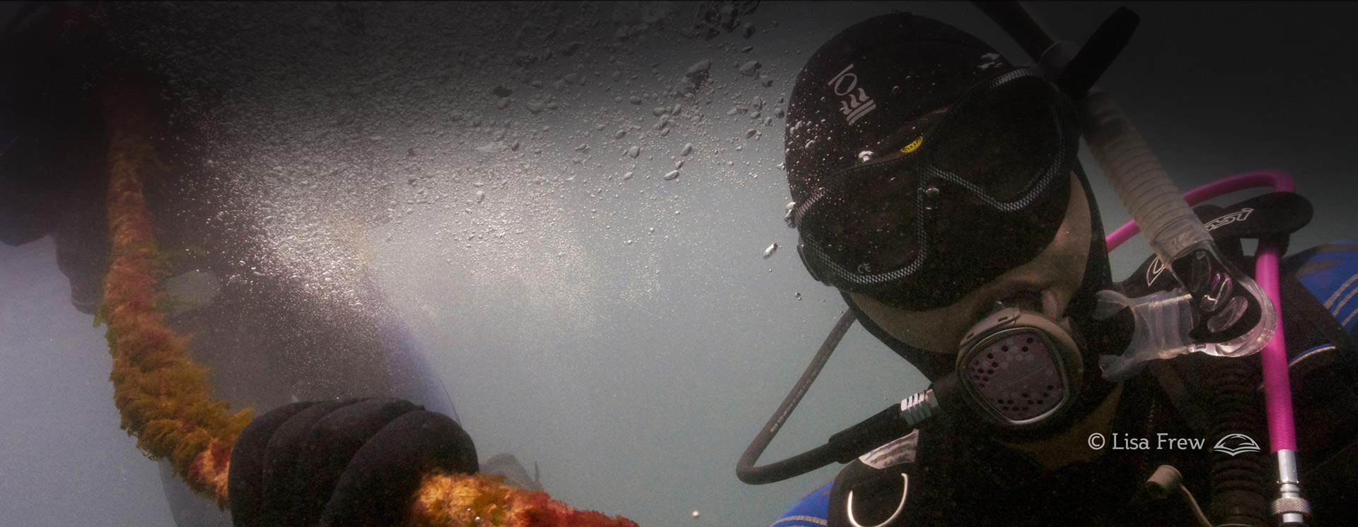Image of diver on PADI Advanced Open Water diver course